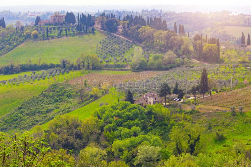 Typical Tuscan landscape. A view of a villa on a hill, a cypress alley and a valley with vineyards, province of Siena. Tuscany, Italy stock photo