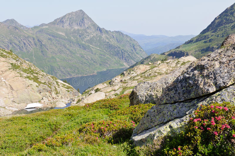 Typical view in Pyrenees mountains, Ariege, France. Typical view in Pyrenees mountains at summer stock images