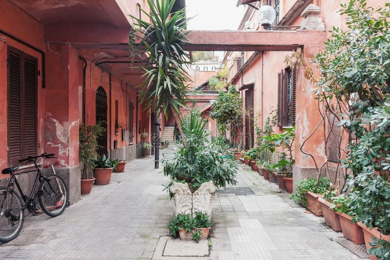 Typical weathered residential yard in the old town Rome with tropical potted flowers stock photo