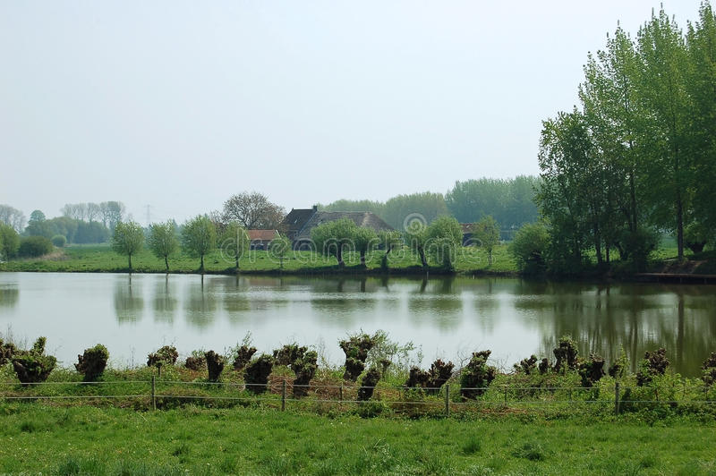Download Typical Wet Dutch Landscape Stock Image - Image of pretty, scenic: 10131647