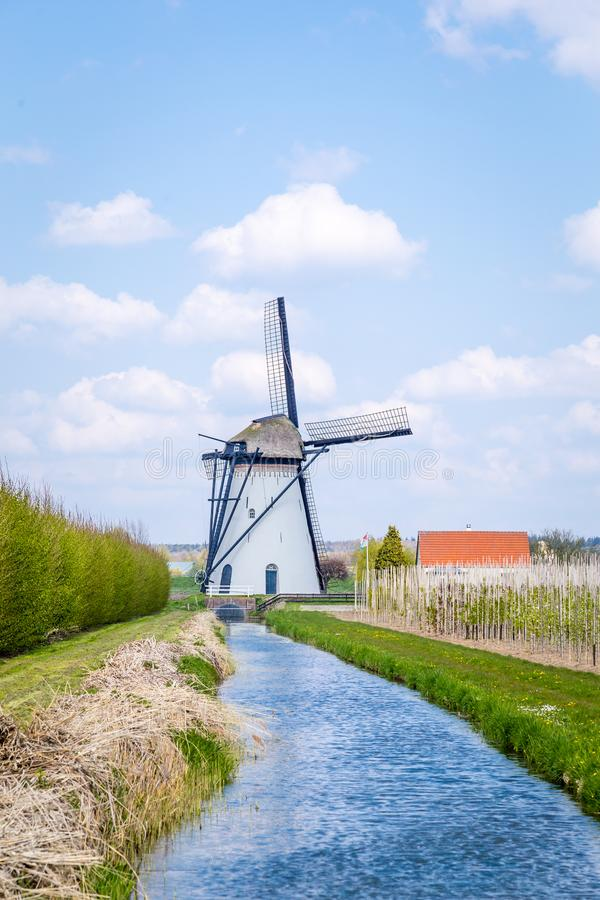 Typical White Dutch windmill landscape. White Dutch windmill near Kesteren in Gelderland in the Netherland stock photo