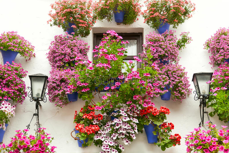 Typical Window decorated Pink and Red Flowers, Spain, Mediterra stock photography