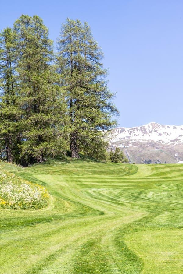 Download Typisch Alpien Landschap In De Lente Stock Foto - Afbeelding bestaande uit paardebloem, landschap: 107701528