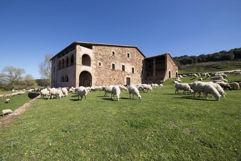 Typisch Catalaans landbouwbedrijf in Catalonië stock fotografie