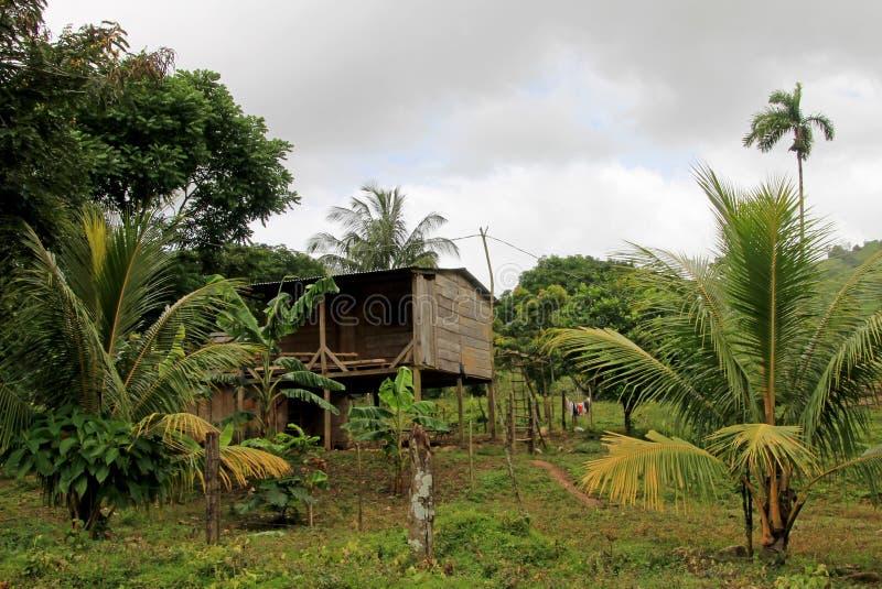 Typisch huis in de nicaraguan wildernis, Nicaragua stock afbeeldingen