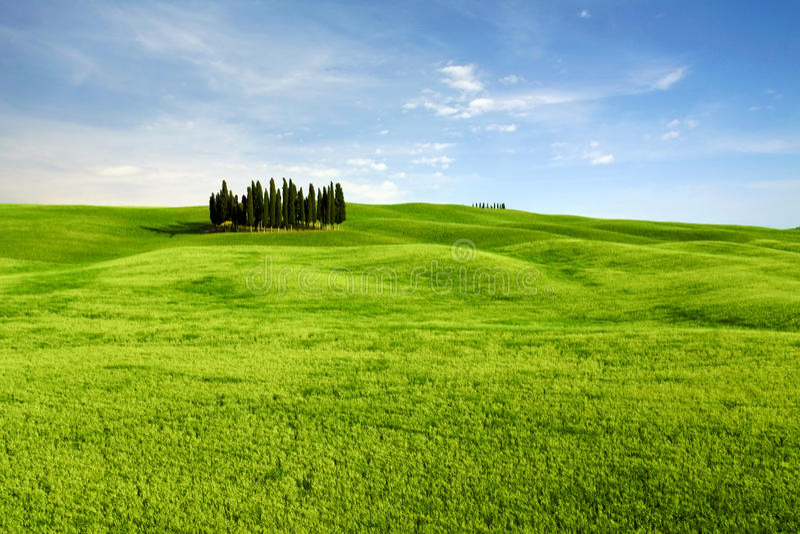 Typisch landschap in Toscanië, Italië stock foto