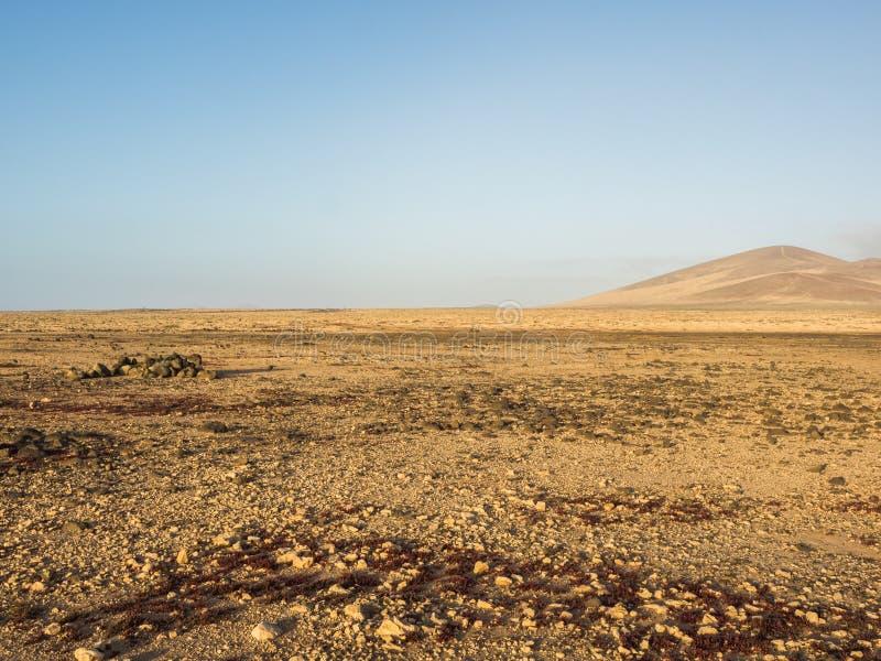 Typisch landschap van Fuerteventura, Canarische Eilanden stock foto