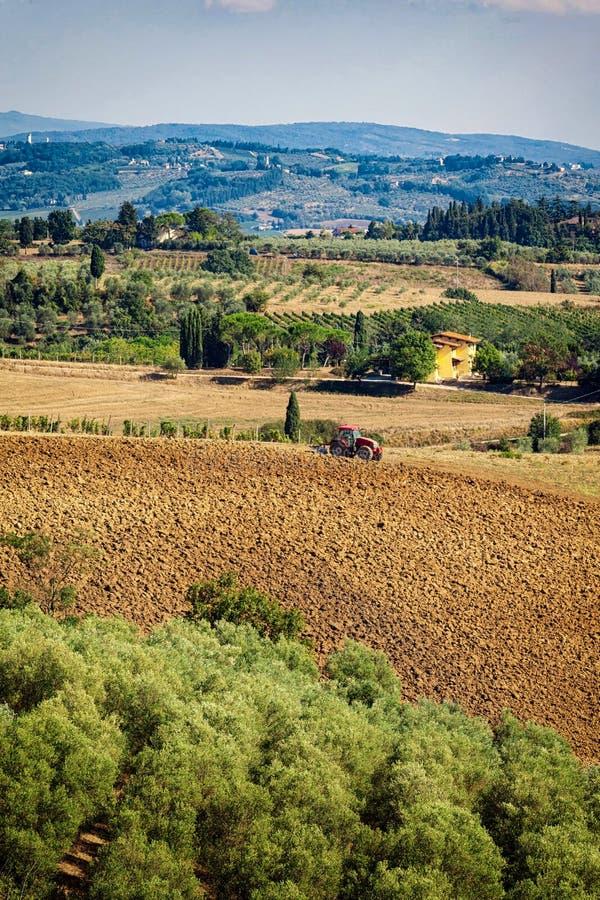 Typisch Toscaans heuvellandschap met wijngaarden, olijfgaard en RT royalty-vrije stock foto
