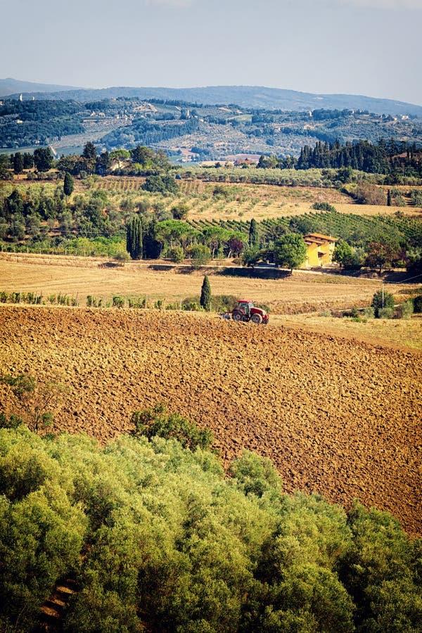 Typisch Toscaans heuvellandschap met wijngaarden, olijfgaard en RT stock afbeeldingen