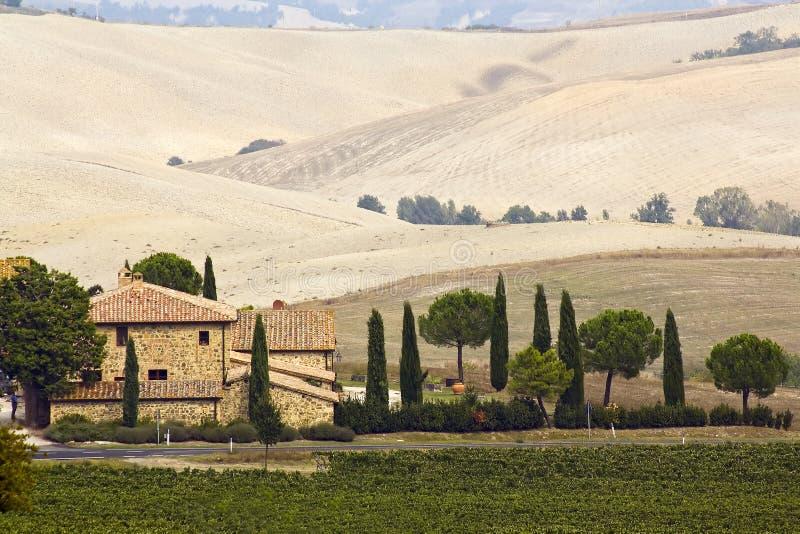 Typisch Toscaans landschap royalty-vrije stock afbeeldingen