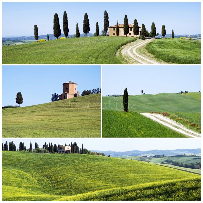 Typisch Toscaans landschap stock foto
