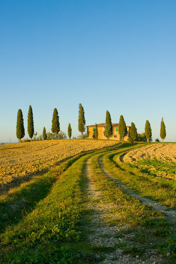 Typisch Toscaans landschap royalty-vrije stock fotografie