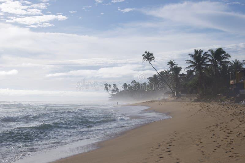 Typische Ansicht Sri Lankas lizenzfreies stockfoto