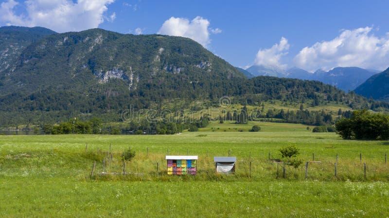 Typische bijenkorf in Slovenië royalty-vrije stock foto's
