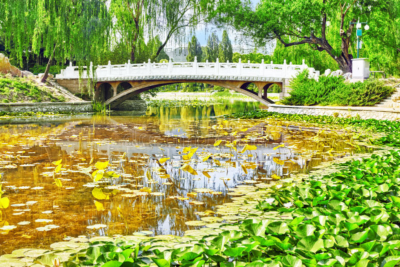 Typische Chinese tuin, park met bizarre rotsen Peking stock afbeelding