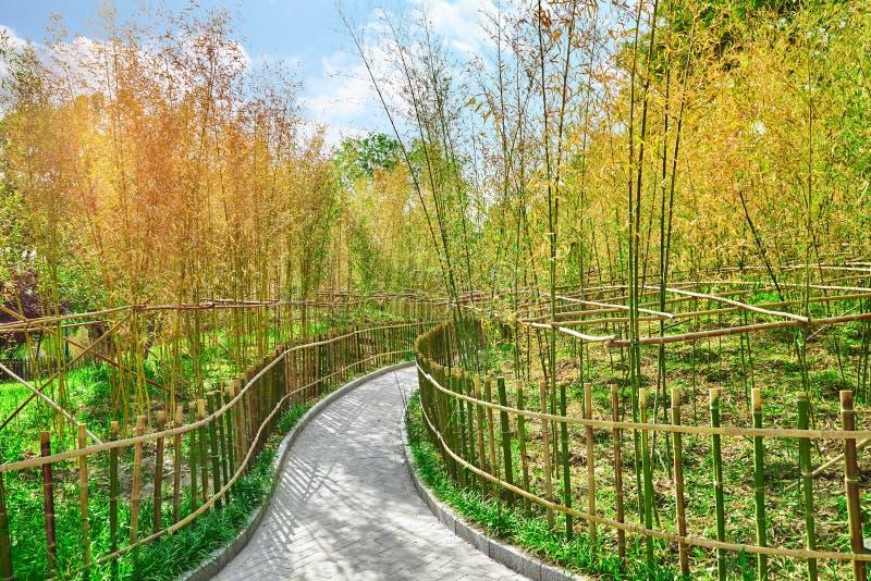 Typische Chinese tuin, park met bizarre rotsen Peking royalty-vrije stock afbeeldingen