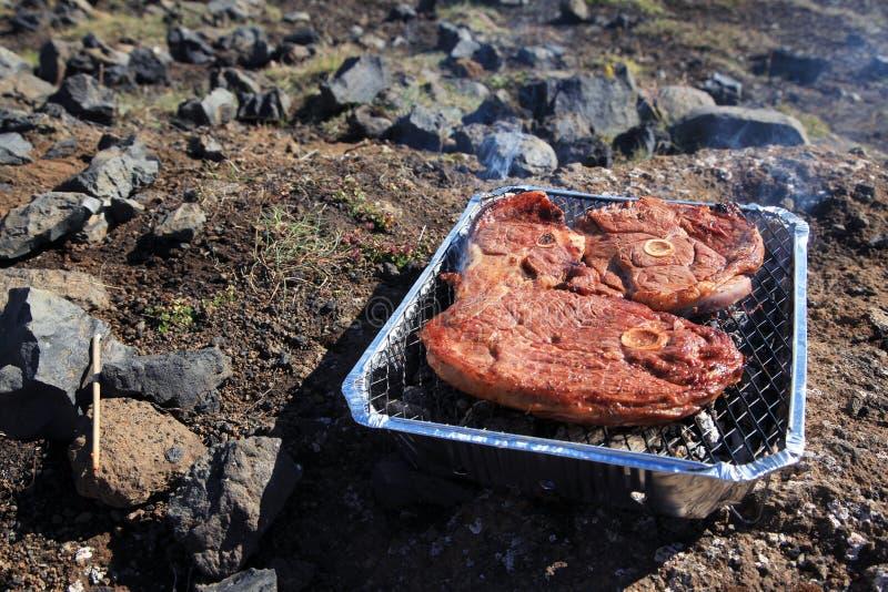 Typische Ijslandse lunch met schaaplapje vlees stock foto
