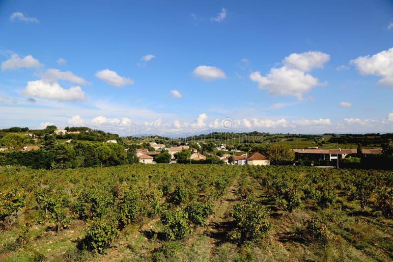 Typische Landschaft in Provence, Frankreich mit Weinberg und kleinem Dorf stockbild