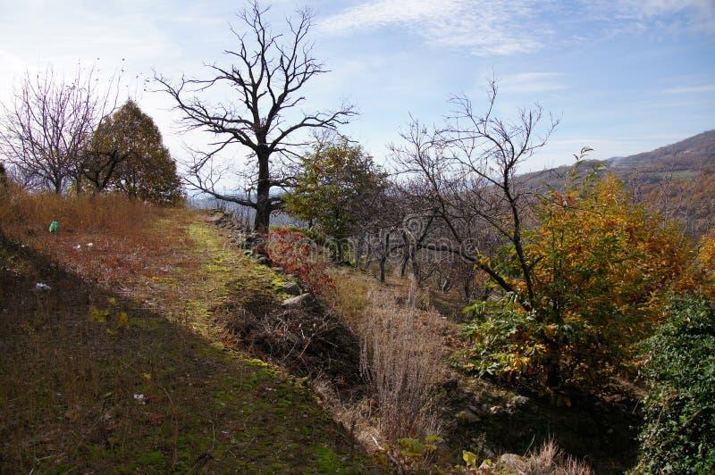 Typische Landschaft von La Vera im Herbst lizenzfreie stockfotos
