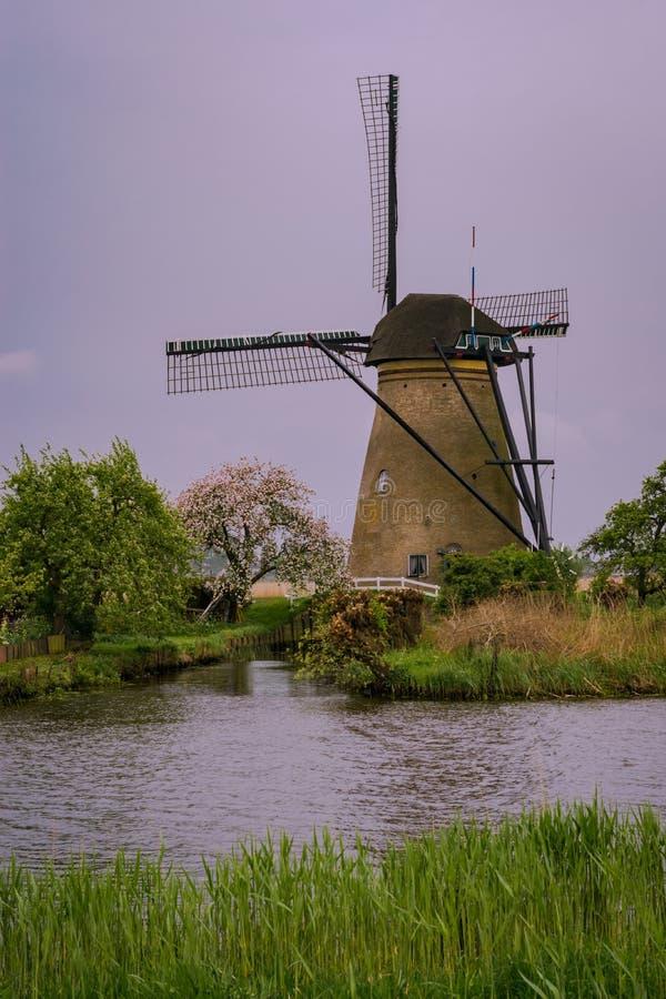 Typische Nederlandse windmolen in Kinderdijk, dichtbij Rotterdam, Nederland stock fotografie