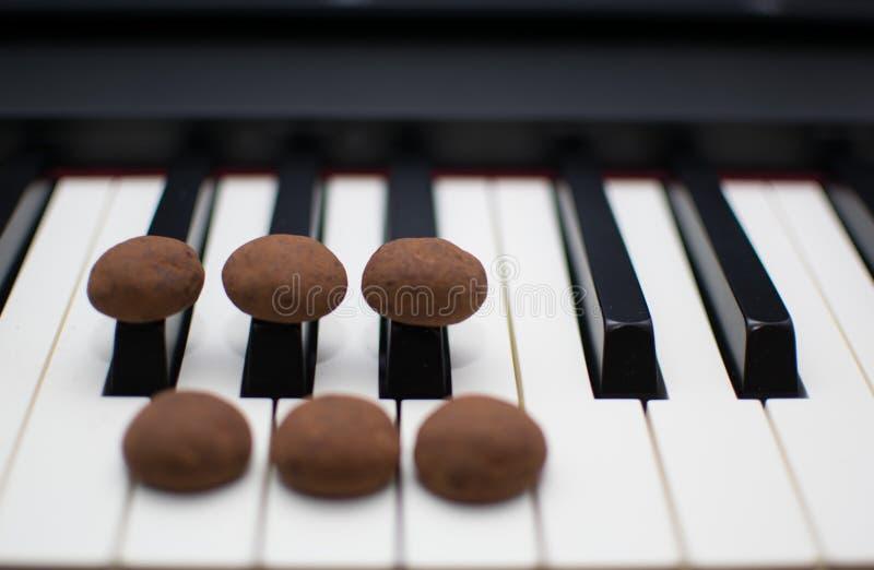 Typische niederländische Plätzchen pepernoten auf Klavierschlüsseln stockbild