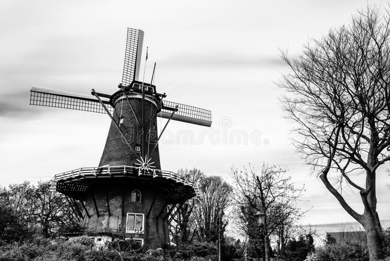 Typische niederländische Windmühle in Alkmaar, Schwarzweiss-Landschaft stockbild