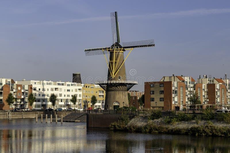 Typische niederländische Windmühle in der Stadt lizenzfreie stockbilder