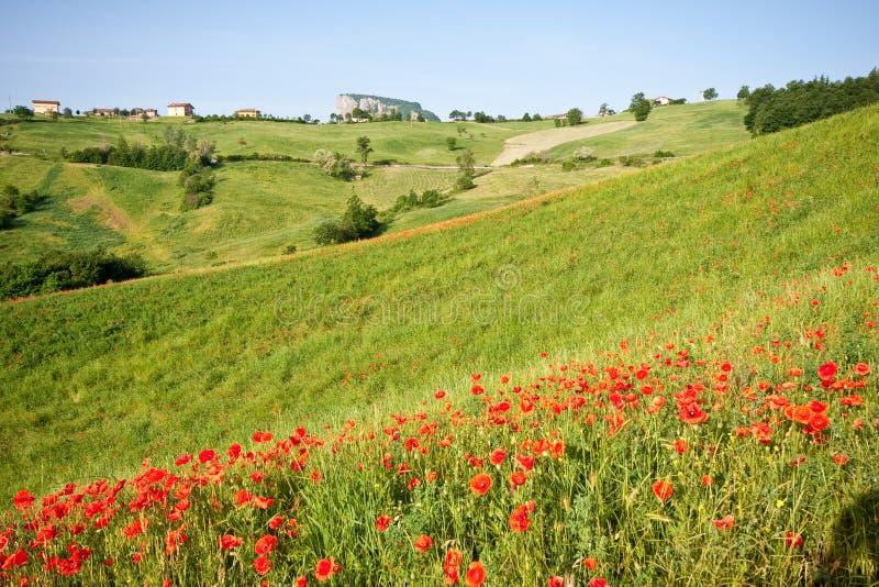 Typische toskanische Landschaft stockfotos