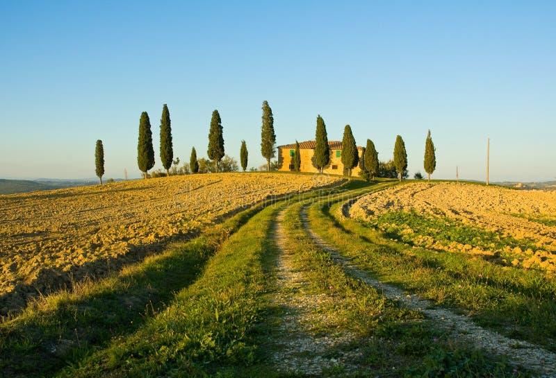 Typische toskanische Landschaft lizenzfreie stockfotografie
