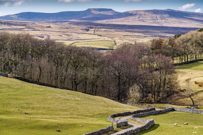 Typische Yorkshire-Tallandschaft mit Rolling Hills und einem Land lizenzfreie stockbilder
