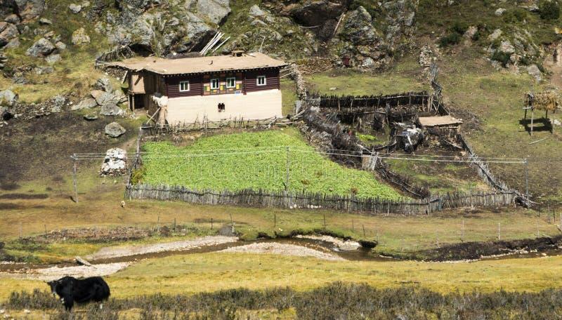 Typischer Bauernhof von Kham, Tibet stockbilder