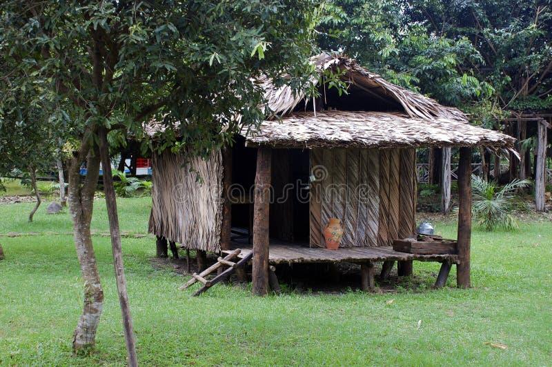 Typisches habitaion des gebürtigen Amazonas-Inders lizenzfreie stockfotografie