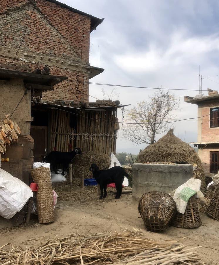 Typisches Haus in der Landschaft des Kathmandutals stockfotografie