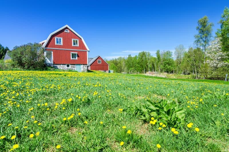 typisches haus des schweden im landschaftsbild stockfoto bild von landwirtschaft schlag 71633976. Black Bedroom Furniture Sets. Home Design Ideas