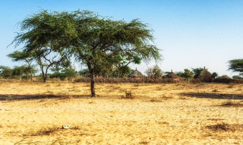 Typisches Strohdachdorf in der Landschaft von Senegal, West-Afrika lizenzfreie stockbilder