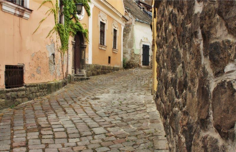 Typisk europeisk gränd i den Szentendre Ungern arkivbild