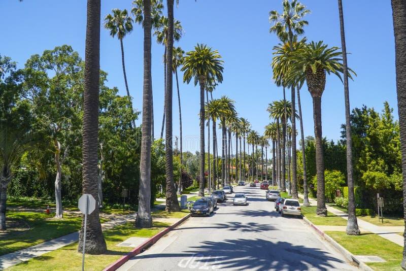 Typisk gatasikt i Beverly Hills - gränd av palmträd - LOS ANGELES - KALIFORNIEN - APRIL 20, 2017 arkivfoton