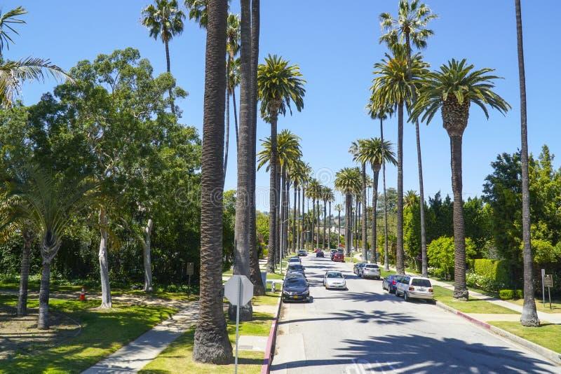 Typisk gatasikt i Beverly Hills - gränd av palmträd - LOS ANGELES - KALIFORNIEN - APRIL 20, 2017 royaltyfri bild