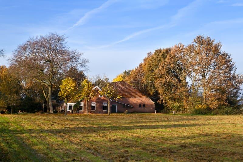 Typisk holländsk lantgård i höst royaltyfri fotografi