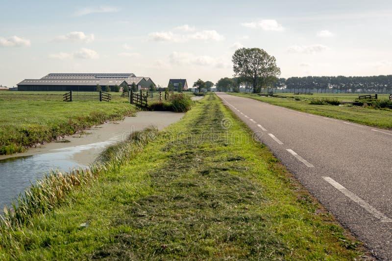 Typisk holländskt polderlandskap med en landsväg mellan Met arkivbild