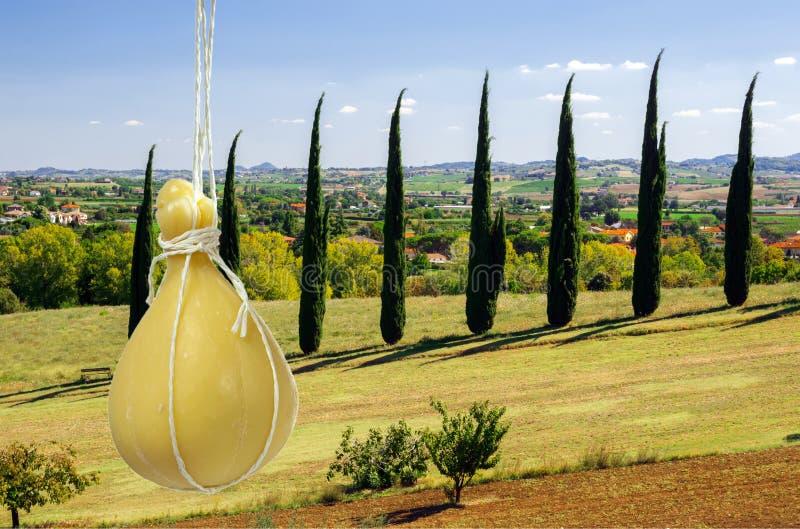Typisk italiensk ost Caciocavallo mot bakgrunden av det karakteristiska italienska landskapet arkivbild