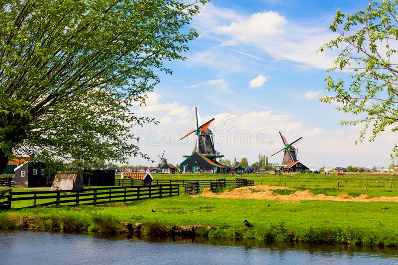 Typisk landskap f?r holl?ndare Traditionella gamla holländska väderkvarnar med blå molnig himmel i den Zaanse Schans byn, Nederlä arkivfoton