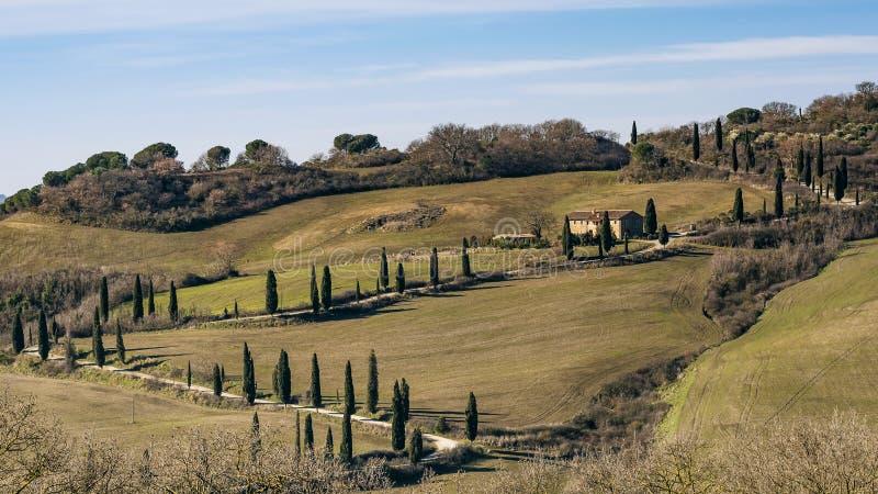Typisk lantligt landskap av de Tuscan bygdsöderna av Siena, Italien, med cypressar som gränsar grusvägen royaltyfri bild