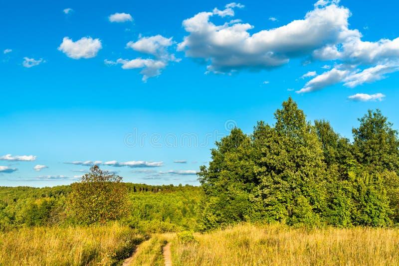 Typisk lantligt landskap av den Kursk regionen, Ryssland arkivbild