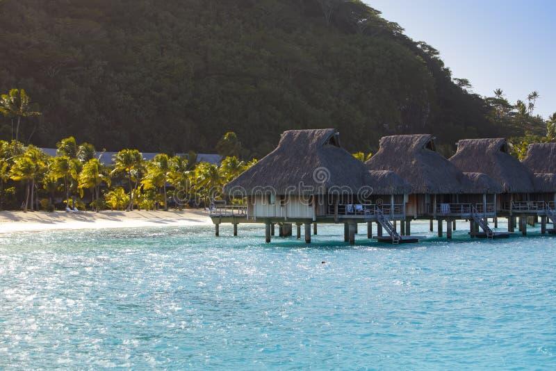 Typisk Polynesian landskap - ö med palmträd och små hus på vatten i havet och bergen på en bakgrund arkivbilder