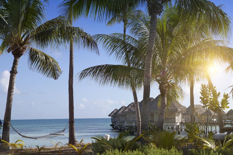Typisk Polynesian liggande - seacoast med palmträd och lilla hus på vatten royaltyfria bilder