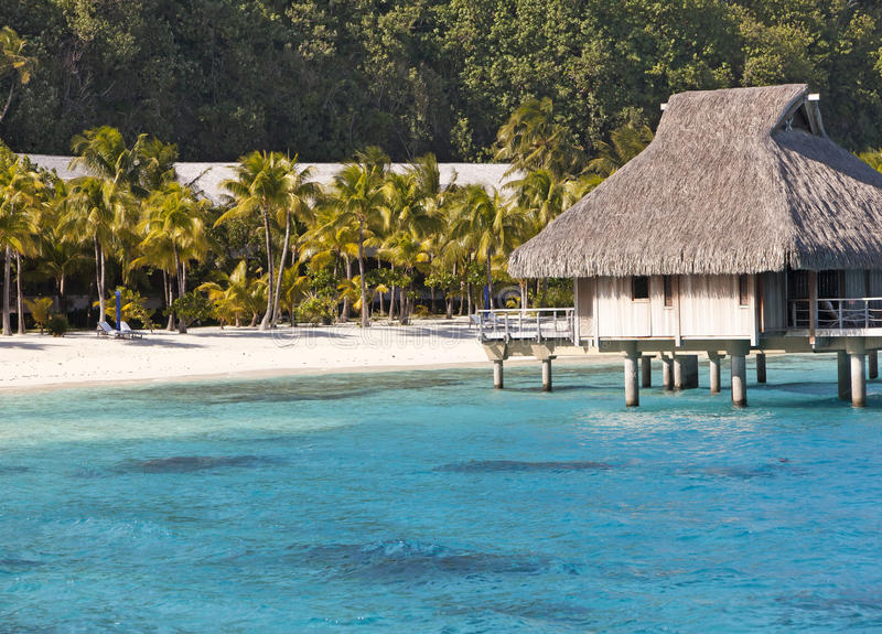 Typisk Polynesian liggande - seacoast med palmträd och lilla hus på vatten royaltyfria foton