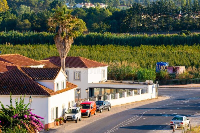 Typisk portugisiskt lantligt hus n?ra en v?g i det Portugal landskapet arkivbilder