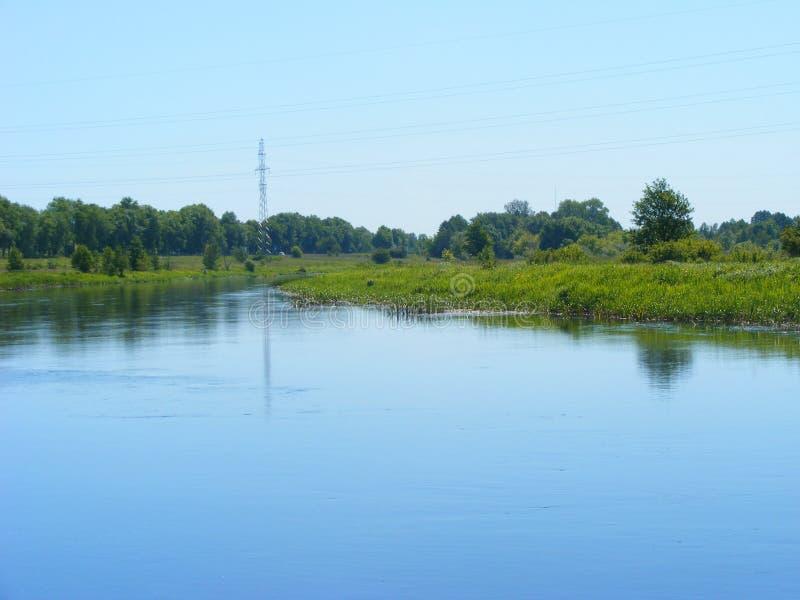 Typisk sommarflodplats, flod Schara, Slonim, Vitryssland Sommarlandskap med skogsjön, floden och blå himmel fotografering för bildbyråer