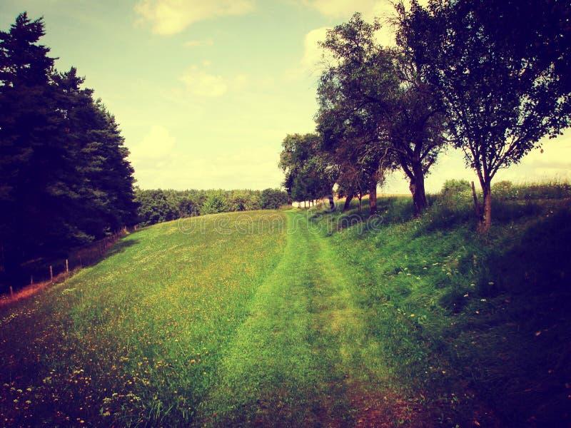 Typisk tjeckiskt landskap i sommar fotografering för bildbyråer